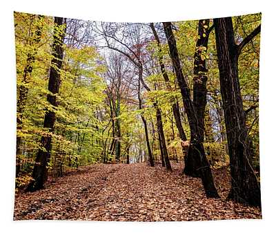 Autumn Woods Tapestry