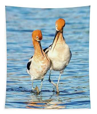 Avocet Dance Tapestry