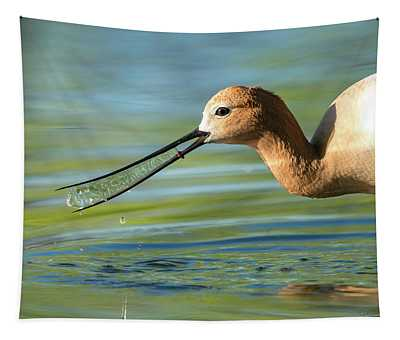 Avocet Magic Tapestry