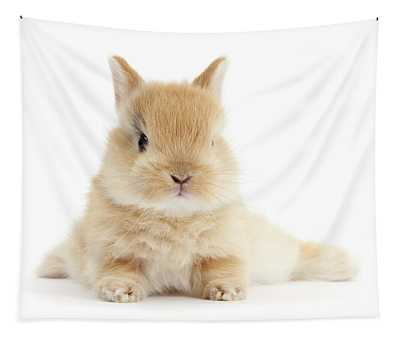 Baby Love Bunny Tapestry