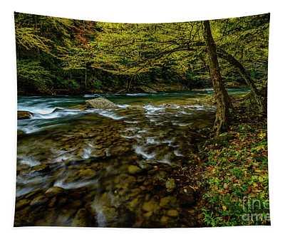 Back Fork Of Elk River Fall  Tapestry