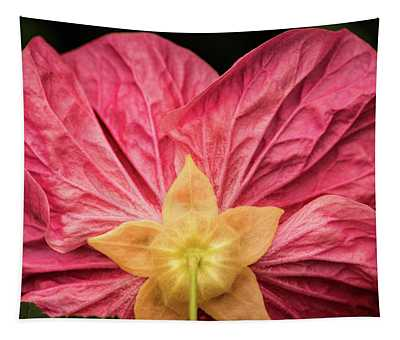 Back Of Small Hibiscus Tapestry