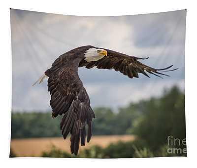 Bald Eagle 2 Tapestry