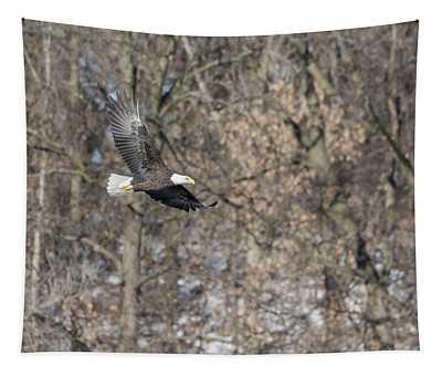 Bald Eagle 2018-10 Tapestry