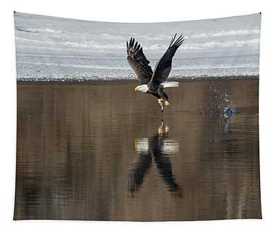 Bald Eagle 2018-17 Tapestry