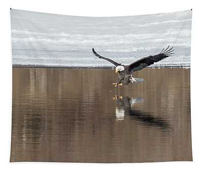 Bald Eagle 2018-5 Tapestry