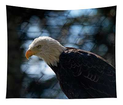 Bald Eagle Grandfather Mountain Tapestry