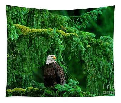 Bald Eagle In Temperate Rainforest Alaska Endangered Species Tapestry