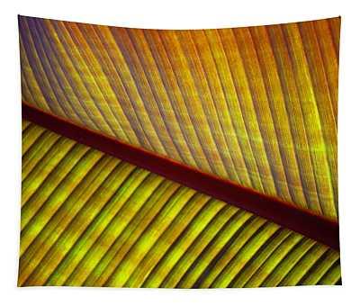 Banana Leaf 8603 Tapestry