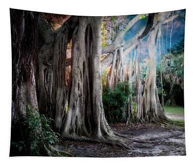 Banyan Ft Lauderdale Tapestry