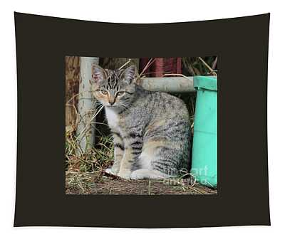 Barn Cat Tapestry