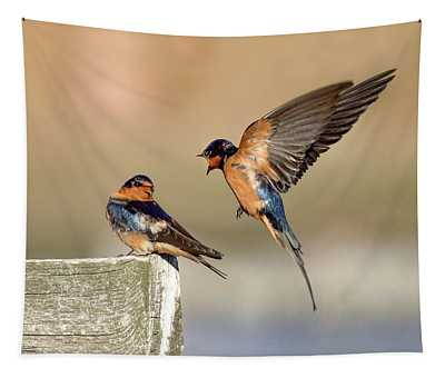 Barn Swallow Conversation Tapestry