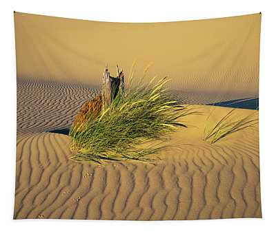 Beachgrass And Ripples Tapestry