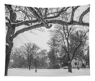 Beaumont Tower In Winter  Tapestry