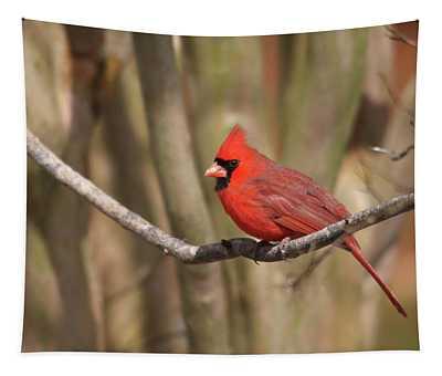 Beautiful Male Cardinal Tapestry