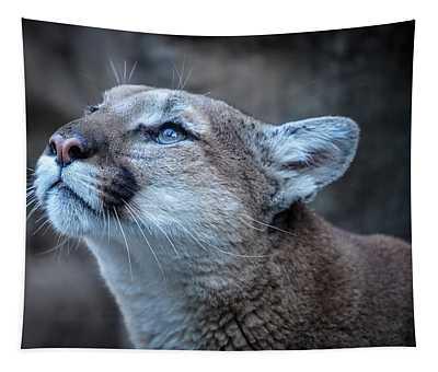 Beautiful Puma Tapestry