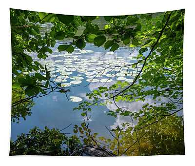 beauty at a lake near Swieta Lipka, Masurian Lake District Tapestry