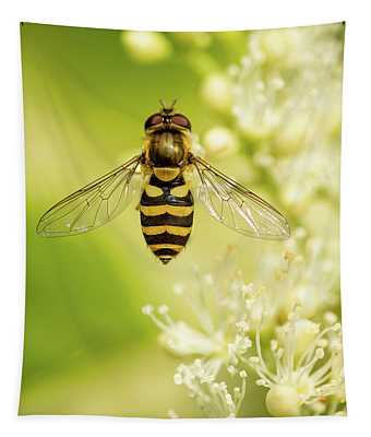 Bee Up Tapestry