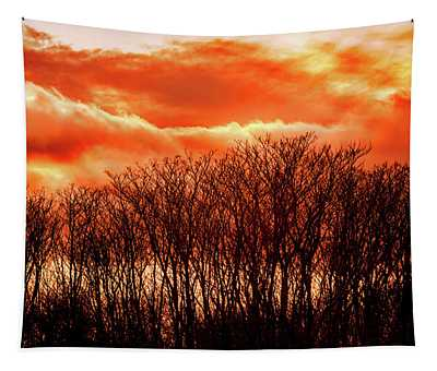 Bhrp Sunset Tapestry