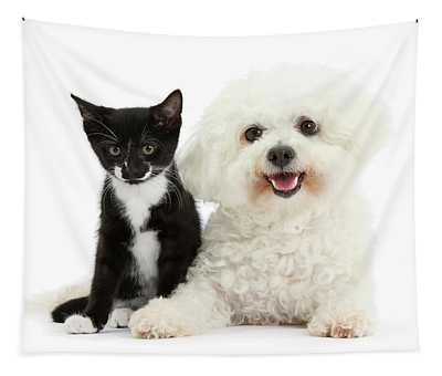Bichon And Tuxedo Kitten Friend Tapestry
