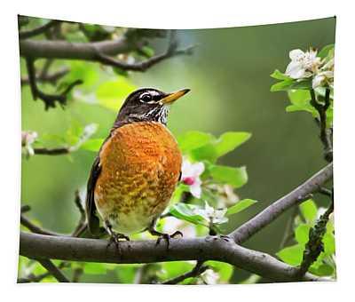 Birds - American Robin - Nature's Alarm Clock Tapestry
