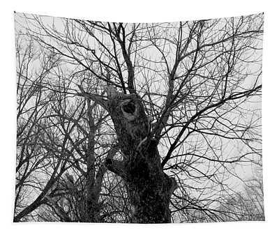 Black Against Gray Tapestry