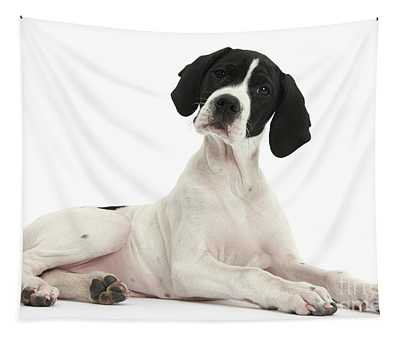 Black-and-white Pointer Pup Tapestry
