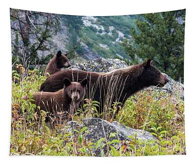 Bears 1 Tapestry