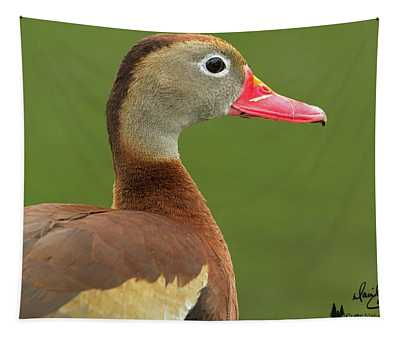 Black-bellied Whistling Duck Tapestry