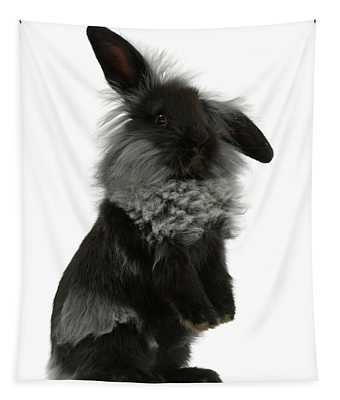 Black Rough Bunny Tapestry
