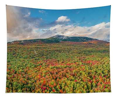 Blanketed In Color Tapestry