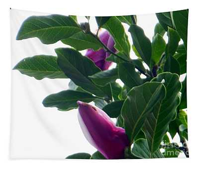 Blossoming Magnolias Tapestry