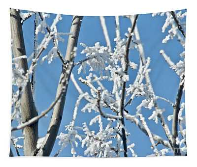 Blue And White Morning Tapestry