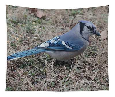 Blue Jay 5608 Tapestry
