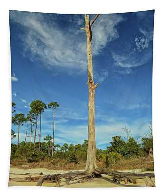 Blue Skies And Broken Branches Tapestry