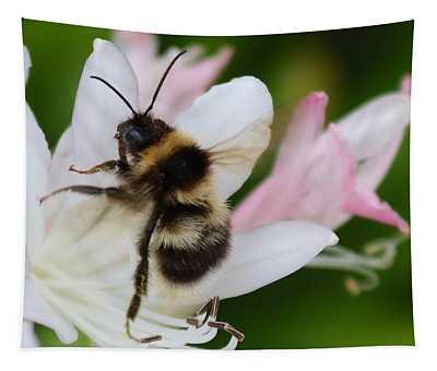 Bombus Terrestris-bumblebee Tapestry