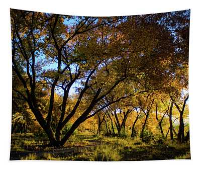 Bosque Color Tapestry