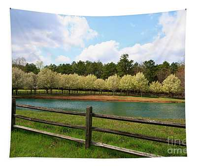 Bradford Pear Trees Blooming Tapestry
