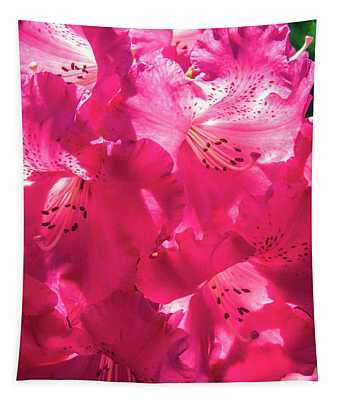 Bright Pink Blooming Rhododendron Tapestry