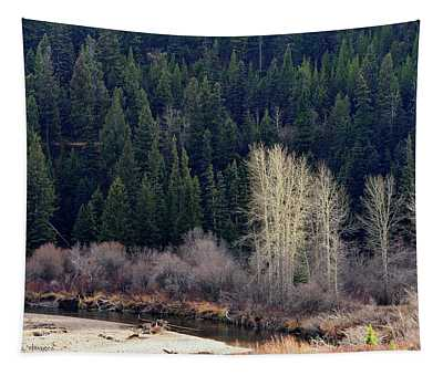 Bright Trees Without Leaves Tapestry