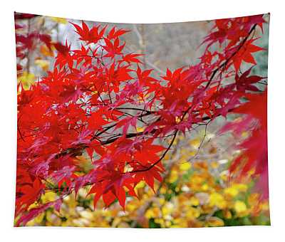 Brilliant Fall Color Tapestry