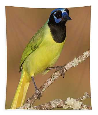 Brilliant Green Jay Tapestry