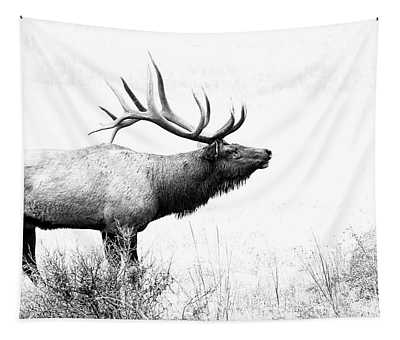Bull Elk In Rut Tapestry