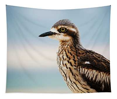 Bush Stone-curlew Resting On The Beach. Tapestry
