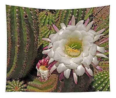 Cactus Blossom 3  Tapestry
