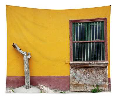 Cactus Trunk And Window Putre Chile Tapestry