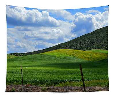 California Back Roads Tapestry