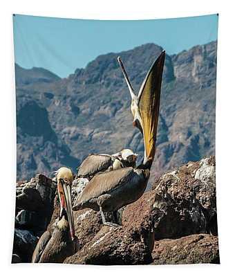 California Brown Pelicans In Ilsa Danzante Harbor Tapestry