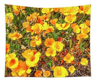 California Poppies - 2019 #3 Tapestry