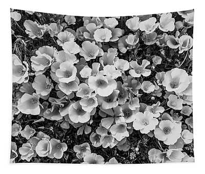 California Poppies - 2019 - Black And White Tapestry